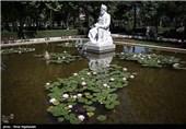 مراسم گرامیداشت روز فردوسی در مشهد