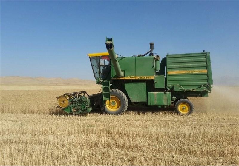 مرکز خرید تضمینی گندم در مازندران تعیین شد