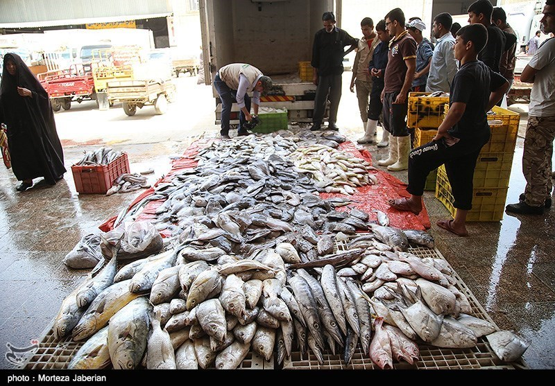 300 کیلوگرم ماهی غیربهداشتی در زاهدان معدوم شد