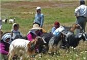 سمنان| صنعت گردشگری رویداد محور در دامغان توسعه مییابد