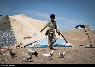 چادرنشینی مهاجران زابلی