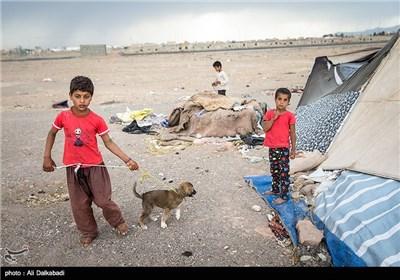 چادرنشینی مهاجران زابلی در سبزوار
