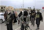 طالبان علیه داعش