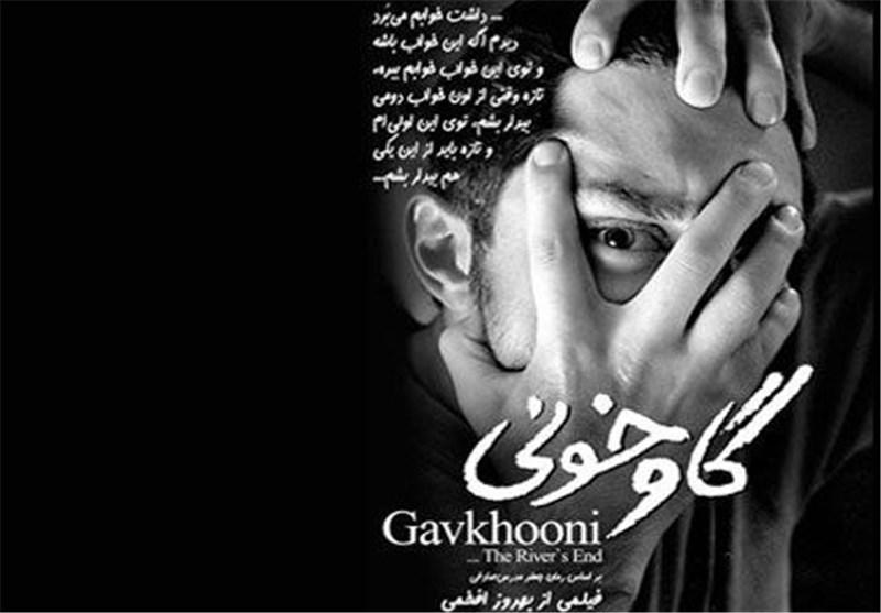سینمای اقتباسی در ایران چندان موفق نبوده است