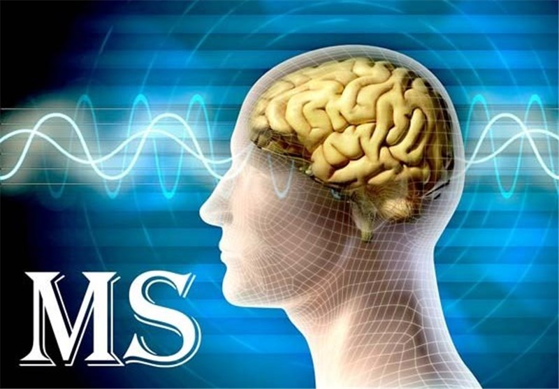 Potential Path to Repair MS-Damaged Nerves