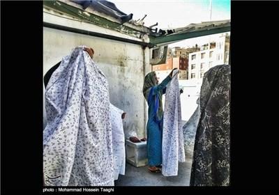 زائران حرم امام رضا(ع)