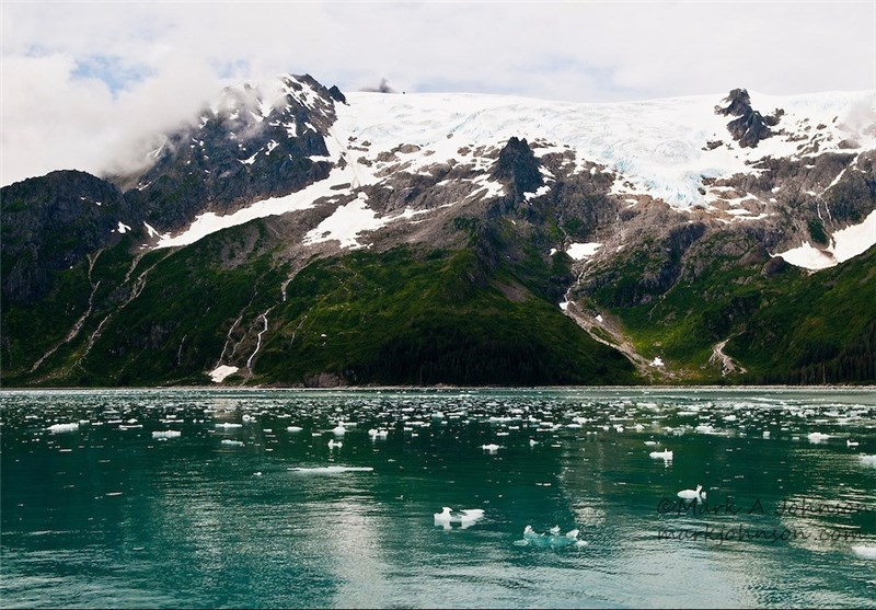 Alaska's Glacier Bay National Park