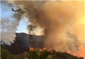 آتشسوزی در کالیفرنیای آمریکا 3000 نفر را آواره کرد+فیلم و تصاویر