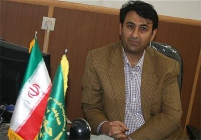 سید حسین بخشایش مدیر تنظیم بازار سازمان جهاد کشاورزی یزد