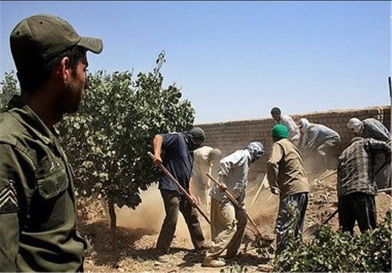 دستگاه قضایی استان بوشهر با متخلفان بهرهبرداری از منابع آب قاطعانه برخورد میکند