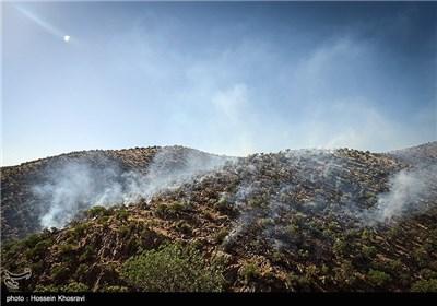 Wildfire in Pasargad Region, Southwest of Iran