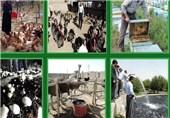 طرحهای کارآفرینی و اقتصاد مقاومتی در بوشهر به بهرهبرداری میرسد