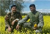 ابوسجاد و سیدحکیم و حجت فاطمیون در قاب یک دوربین+فیلم