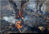 آتشسوزی در ارتفاعات ابوالحیات کازرون همچنان ادامه دارد/ اعزام نیروی کمکی از شیراز