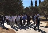 فلسطین|یورش بیش از 110 شهرکنشین صهیونیست به مسجدالأقصی