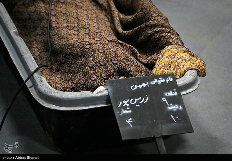 قیمت ارز زرین