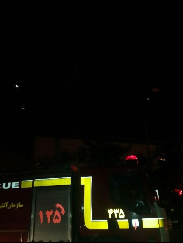 کانال+تلگرام+سگ+مشهد