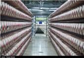بازدید خبرنگاران از روند تولید کارخانه نخ لاستیک سازی کورد - کرمانشاه