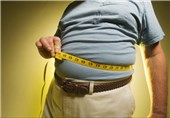 Binge-Eating Mice Reveal Obesity Clues