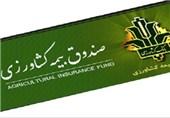 مشهد| بیمه کشاورزی 13 هزار میلیارد ریال غرامت پرداخت کرد