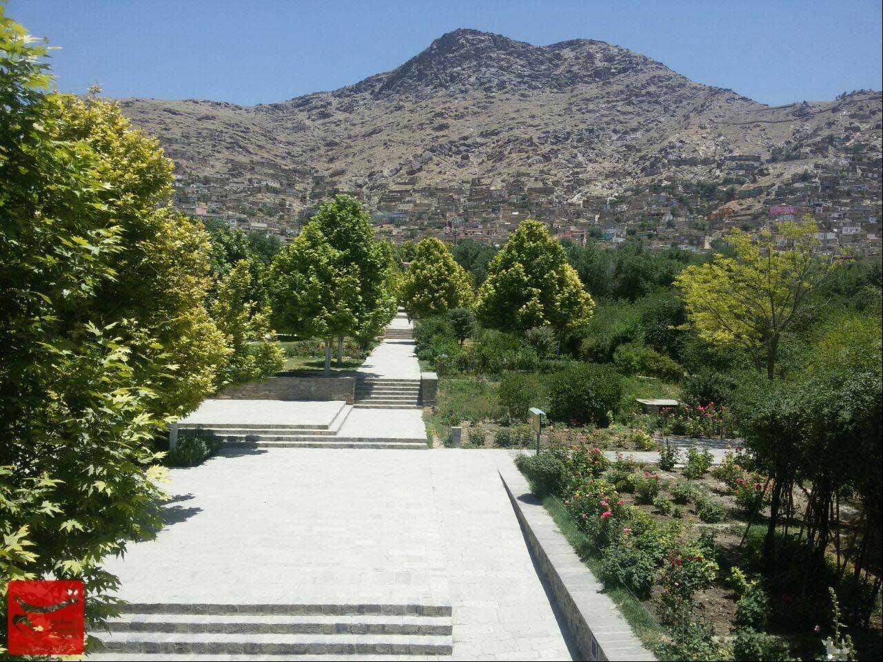 باغبانهای کابل (مستند)