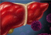 """""""هپاتیت"""" از مالاریا، تب دنگ و ایدز بیشتر قربانی گرفته است"""