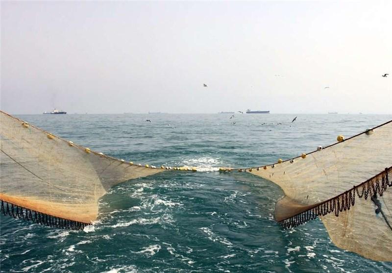 گشتهای تحقیقاتی تعیین زمان صید میگو در آبهای بوشهر آغاز شد