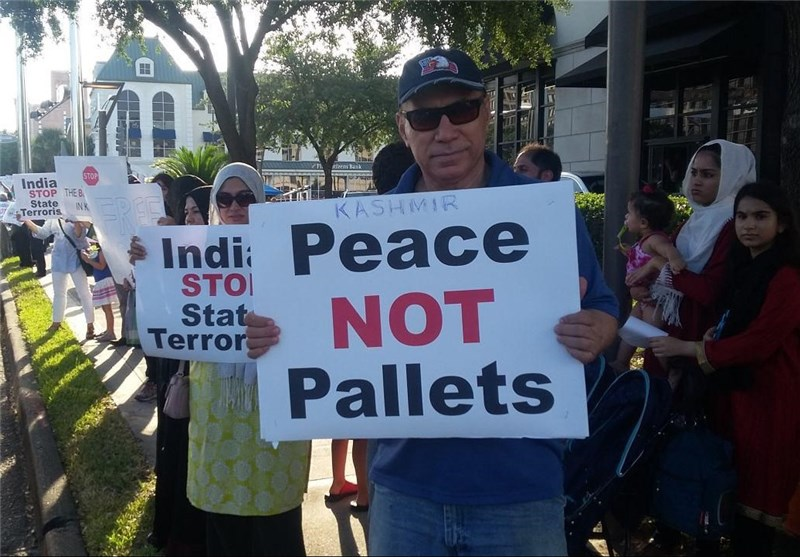 امریکہ میں کشمیریوں کی حمایت میں مظاہرے + تصاویر