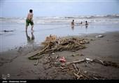سواحل مازندران دارای آلودگی زیست محیطی است