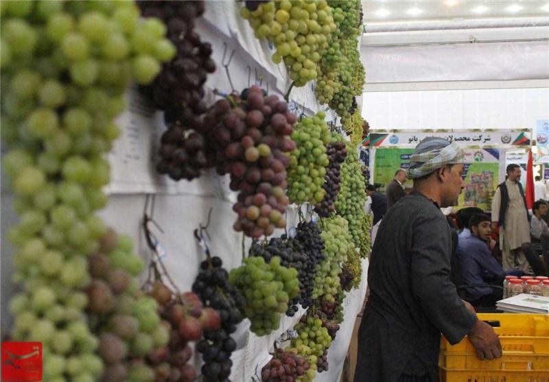 نمایشگاه محصولات کشاورزی هرات 7