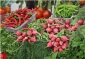 برندسازی و بستهبندی حلقه مفقوده صادرات محصولات کشاورزی فارس