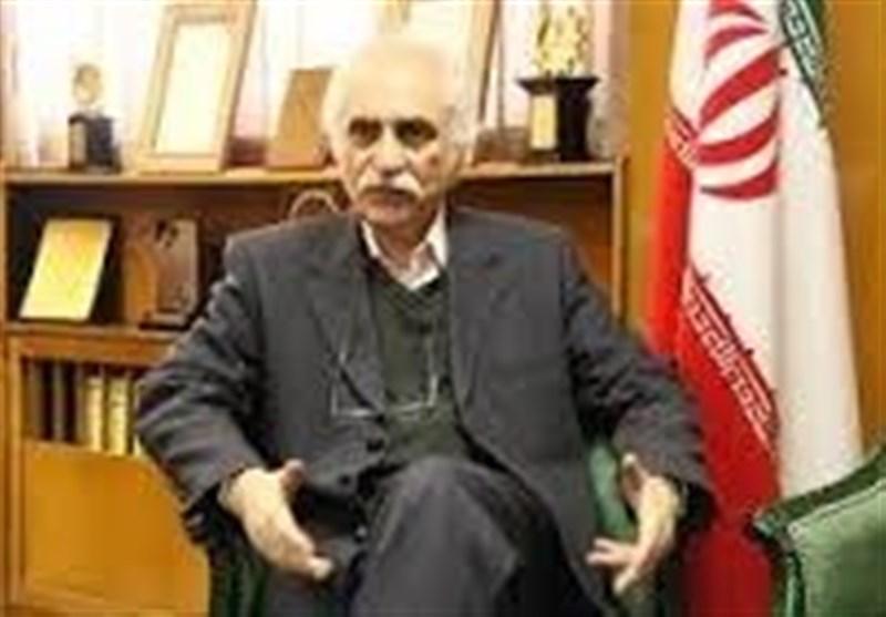 محمدرضا رضوی