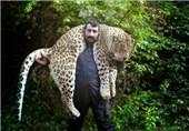 پلنگ مازندران روی دوش این مرد روستایی چه میکرد؟