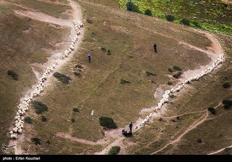 http://newsmedia.tasnimnews.com/Tasnim/Uploaded/Image/1395/05/26/139505262048552248403034.jpg