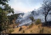 ایلام  آتشسوزی در جنگلهای کبیرکوه مهار شد