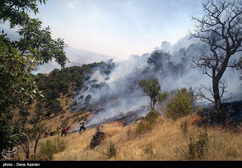 ایلام| آتشسوزی در جنگلهای کبیرکوه مهار شد