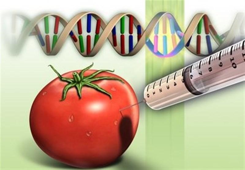 چرایی رشد 180 درصدی بودجه «تجاریسازی محصولات تراریخته» و مهندسی ژنتیک