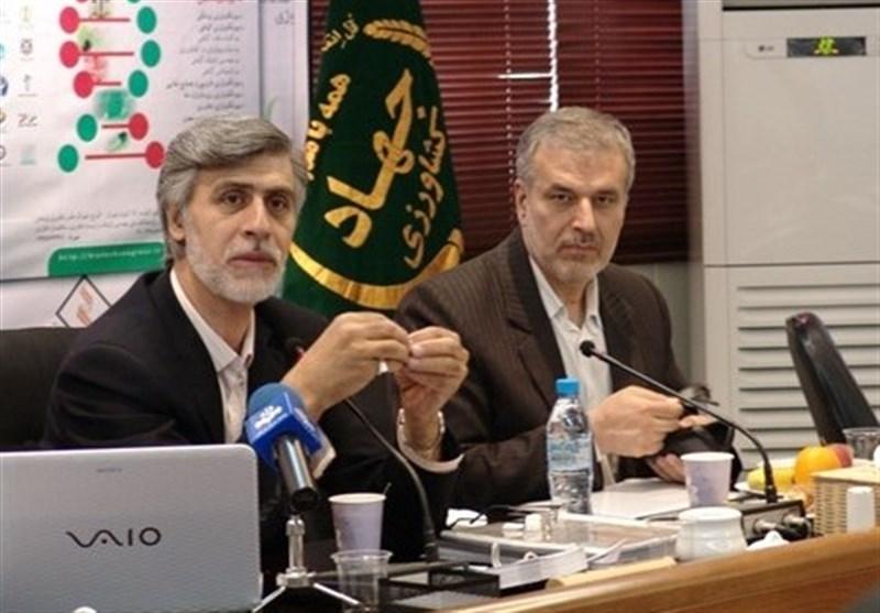 """پنبه ایران در دام """"راکفلر""""/ طرحی که پنبه تراریخته را زد/ پشتپرده یک نسخه شکستخورده از پاکستان تا مکران+ فیلم و اسناد"""