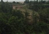 بیش از 461 هکتار از عرصههای منابع طبیعی گلستان خلع ید شد