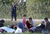 Afghanistan Refugee Shot Dead in Serbia