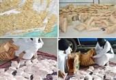 Suudi Arabistan Uyuşturucu Üretimini Destekliyor