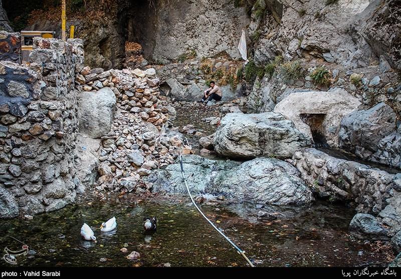 http://newsmedia.tasnimnews.com/Tasnim/Uploaded/Image/1395/06/13/139506131559374088555714.jpg