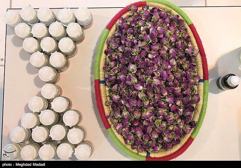 70 هزار شغل با اجرای طرح ملی توسعه گیاهان دارویی در کشور اجرا شد
