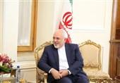 دیدار وزیر خارجه ایران و رئیس جمهور فنلاند