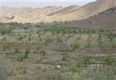 برنامه جامع اصلاح زیرساختهای آب و خاک مازندران تدوین شد