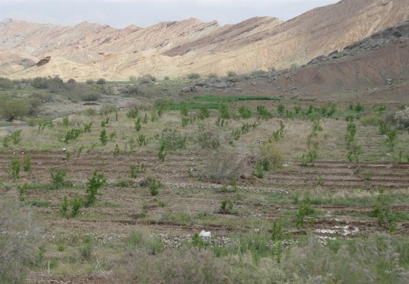 سالانه 2 میلیارد تن خاک کشور فرسوده میشود