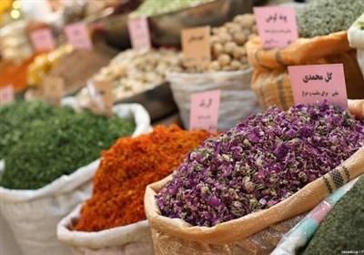 محصولات استراتژیک و گیاهان دارویی میتواند شرایط مطلوبی را برای خراسان جنوبی رقم بزند