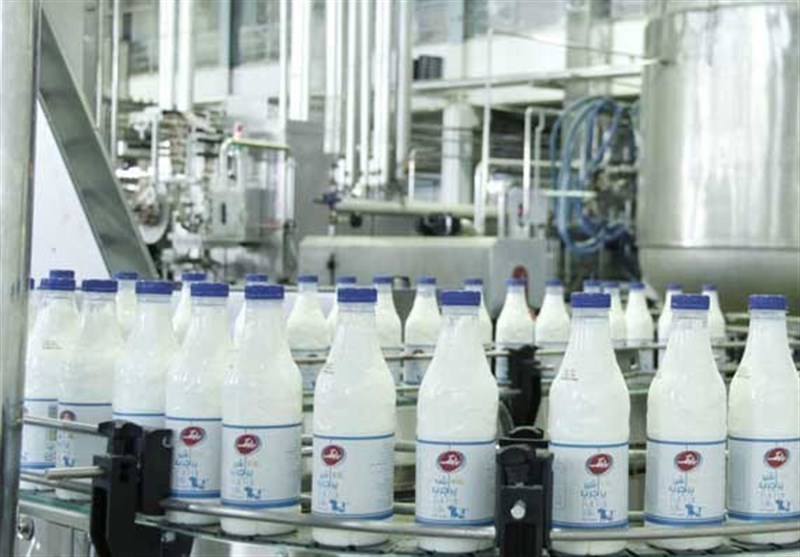 تولید شیر فراپاستوریزه (ESL) در شیراز آغاز شد/افزایش زمان ماندگاری شیر