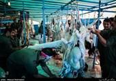 جشن «ذبح عظیم» در امیرآباد دامغان برگزار شد/ اهدا گوشت قربانی به نیازمندان