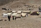 وضعیت معیشتی عشایر سه قلعه به مرز بحران رسید/دیگر برای عشایر رمقی نمانده است